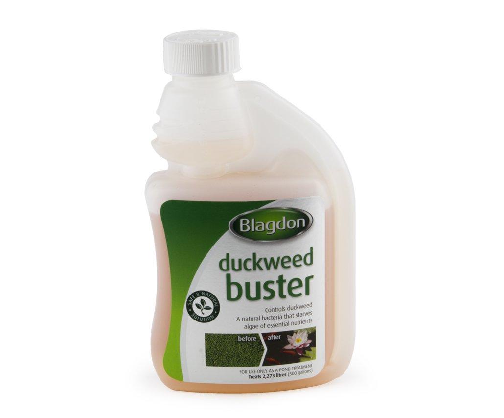 Blagdon Duckweed Buster – 1000ml Interpet Ltd 2766