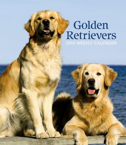 Retriever 2010 Calendar - Golden Retrievers 2010 Weekly Engagement Calendar