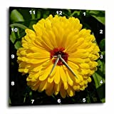 Cheap 3dRose LLC Flowers Marigold Yellow 10 by 10-Inch Wall Clock