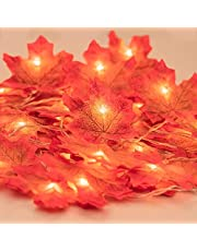 Fall Garland with Lights, Fall Maple Leaves String Light, 6.56ft /20 Led Maple Fairy Light, 3AA Battery Powered Led Maple Garland Harvest Autumn Leave Light for Halloween, Birthday Decoration