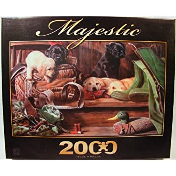 Amazon.com: Maltese Dogs 1000 Piece Jigsaw Puzzle: Toys