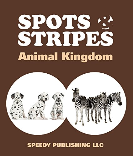 Spots & Stripes Animal Kingdom ()