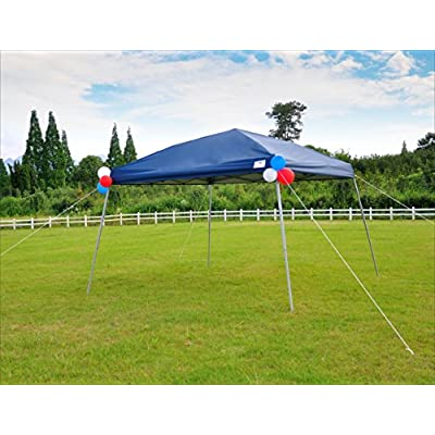 ECOLINEAR 10' x 10' EZ POP UP Canopy Tent W/Carry Bag Wedding Party Tent : Garden & Outdoor