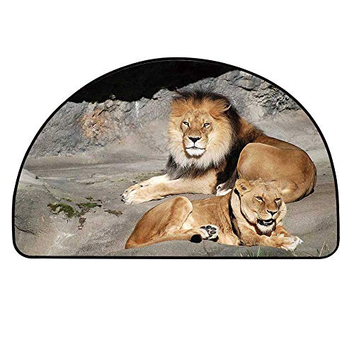 YOLIYANA Zoo Doormat,Male and Female Lions Basking in The Sun Wild Cats Habitat King of Jungle Entryway Mat,39.3