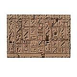 Egyptian Shower Decor Egyptian Hieroglyphics on Vintage Wall Bath Rugs Non-Slip Doormat Floor Entryways Indoor Front Door Mat Kids Bath Mat 15.7X23.6In Bathroom Accessories Browwn