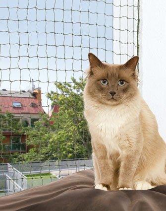 Gato Red | Red de protección para | 6 x 3 m | drahtverstärkt | Nylon |olivgrün: Amazon.es: Productos para mascotas