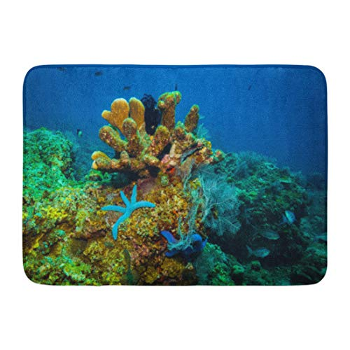 Aabagael Bath Mat Aquatic Blue Animals Seastar on Bali Coral Garden Indonesia Red Aquarium Atoll Bathroom Decor Rug 16'' x 24'' by Aabagael