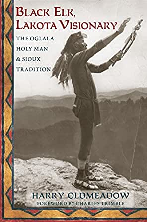 Black Elk, Lakota Visionary: The Oglala Holy Man and Sioux ...