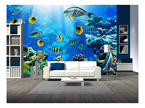 (wall26 - Photo of a Tropical Fish on a Coral Reef - Removable Wall Mural | Self-adhesive Large Wallpaper - 100x144 inches)
