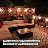 Brightech Ambience Pro Vintage Outdoor String