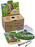 Toys : Insect Lore Live Ladybug Growing Kit Toy - Baby Ladybug Larvae to Adult Ladybugs -SHIP NOW