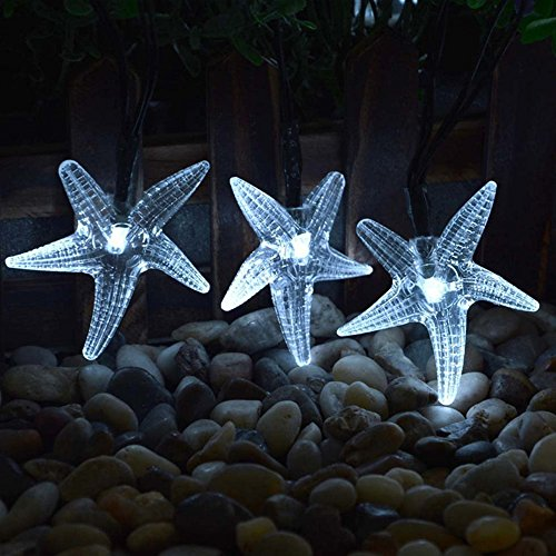 20 Colour Change Solar Party Lights in Florida - 9