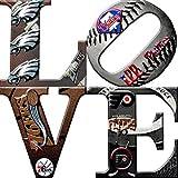 Philadelphia Sports LOVE Canvas Art (30x30)