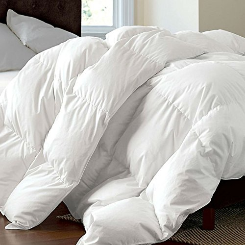 ROSE FEATHER White Luxurious 300TC Cotton White Goose Down Feather Comforter Quilt Insert Light Weight,650+Fill Power,Full/Queen 94x90inchs