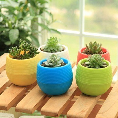 Wish you have a nice day 4.5inch Round Plastic Plant Flower Pots Home Office Decor Planter set of 5 Colors (5, 4.5inch) ()