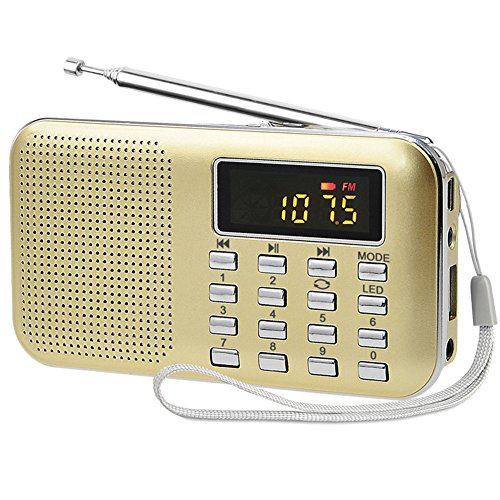 Glod Portable Rechargeable Electronic Audio Bible Blayer 8G NIV Version with Praise Poetry and Sermon