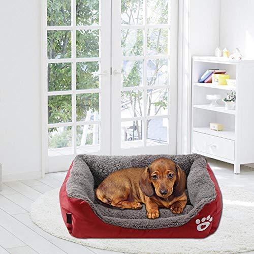 PROKTH | Camas para Mascotas pequeñas, Medianas y Grandes - Cama para Perros de Interior - Sofá Dog Cat -1pcs: Amazon.es: Hogar