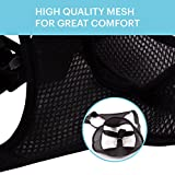 HOUNDNINE Escape Proof Cat Harness   Best for