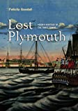 Lost Plymouth : Hidden Heritage of the Three Towns, Goodall, Felicity, 1841586250