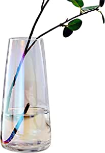 Fantastic Ryan Ins Modern Glass Vase Irised Crystal Clear Glass Vase for Home Office Decor (Irised Clear)
