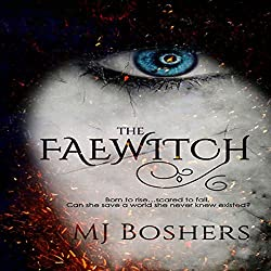 The Faewitch