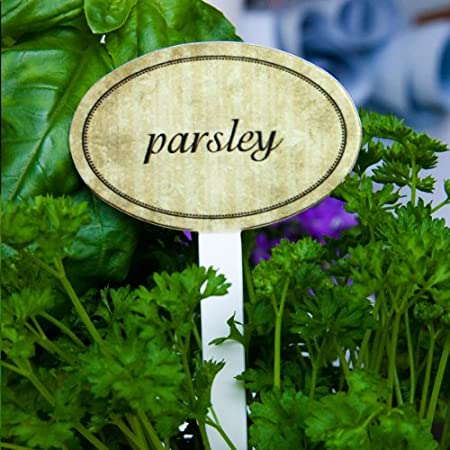 Garden Herb Marker, Signs, Labels, Set Of 15 Pcs