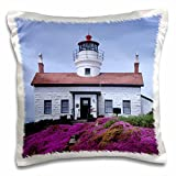 3dRose Danita Delimont - Lighthouses - CA, Crescent City, Battery Point Lighthouse with Flowering Ice Plants. - 16x16 inch Pillow Case (pc_258891_1)