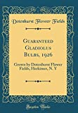 Amazon / Forgotten Books: Guaranteed Gladiolus Bulbs, 1926 Grown by Dotenhurst Flower Fields, Herkimer, n. y Classic Reprint (Dotenhurst Flower Fields)