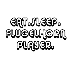 EAT SLEEP FLUGELHORN PLAYER Music Car Laptop Wall Sticker