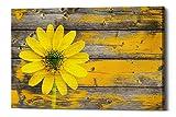 Epic Graffiti'' Wood Series: Rustic Daisy Giclee Canvas Wall Art, 12'' x 18''