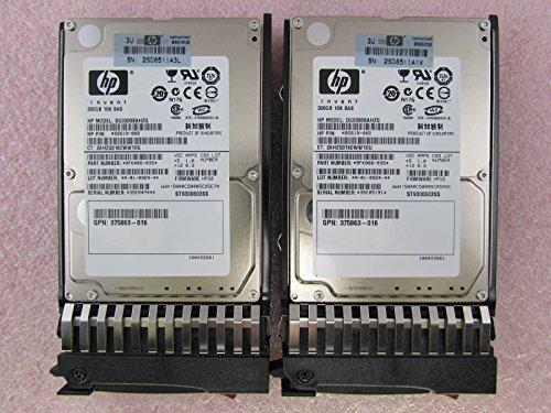 Hp 300 Gb Sas - 8