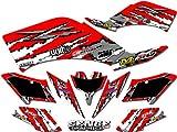 Senge Graphics 2001-2005 Honda TRX 250EX, Shredder Red Graphics Kit