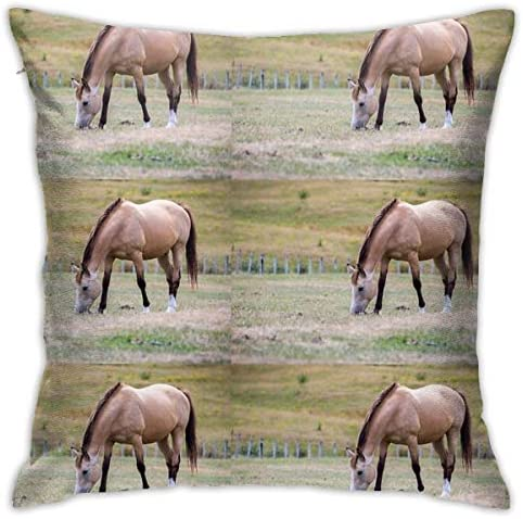 NYF Home Decor Buckskin Horse Square Throw Pillow Cushion Covers Pillow Case Soft Decorative Pillowcase for Sofa Chair
