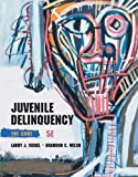 img - for Juvenile Delinquency: The Core book / textbook / text book