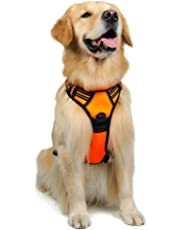 Rabbitgoo Front Range Dog Harness Adjustable Outdoor Pet Vest with Handle Easy Control for Small Medium Large Dogs and Durable Material (Large, Orange)