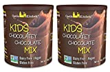 Chocolate Drink Mix Powder For Kids - All Natural, Dairy-Free, Vegan Chocolate Milk Mix - Just Add Any Milk Substitute - 14 oz (Pack of 2)