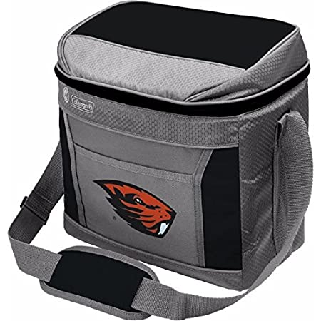 ALL TEAM OPTIONS 16-Can Capacity NCAA Soft-Sided Insulated Cooler Bag