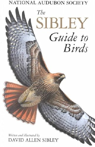 The Sibley Guide to Birds, David Allen Sibley