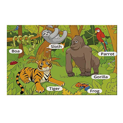 - YOLIYANA Educational Durable Door Mat,Jungle Animals Colorful Funny Hand Drawn Style Zoo Nature Tropical Wildlife for Home Office,19.6