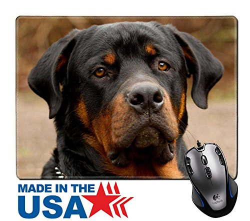 "(MSD Natural Rubber Mouse Pad/Mat with Stitched Edges 9.8"" x 7.9"" IMAGE ID: 15039948 frontal portrait of an adult male purebred Rottweiler narrow dof focus on the eye )"