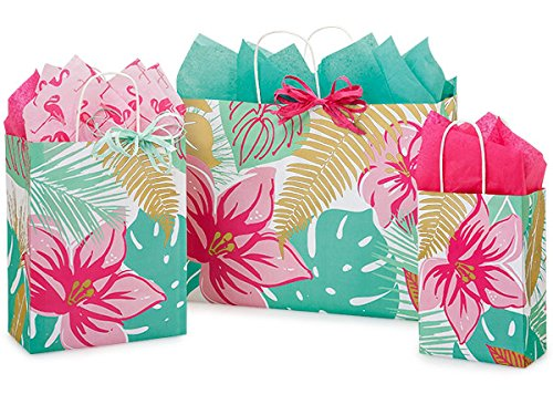 Gift Bags, Assorted Sizes, Bundled with Coordinating Tissue Paper and Raffia Ribbon (Tropical Paradise)