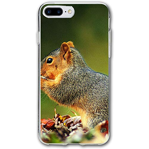 (Squirrel in The Forest Resistant Cover Case Compatible iPhone 7 Plus iPhone 6 Plus)