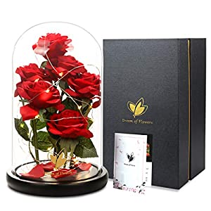 Dream of Flowers Beauty and the Beast Rose, Silk Rose with LED Light and Fallen Petals a Glass Dome Wooden Base, Best for Weddings,Anniversaries &Christmas gift