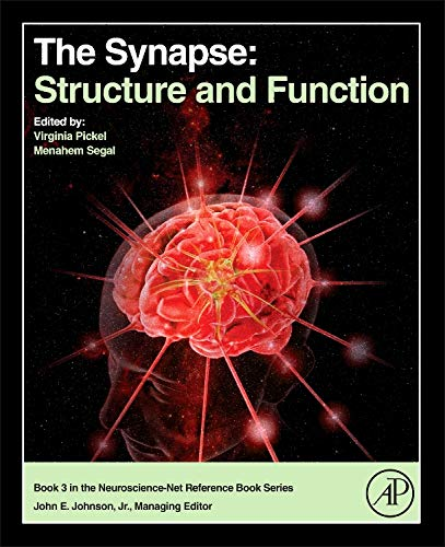 The Synapse: Structure and Function (Neuroscience-net Reference Book) (Function Of Dendrites)