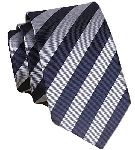 Flairs New York Collection Neck Tie (Midnight Blue / Silver [Stripes])