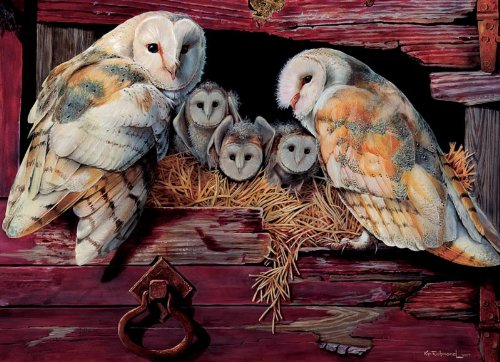Cobble Hill Barn Owls 1000 Piece Jigsaw Puzzle]()