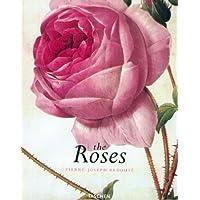 THE ROSES. : Edition français-anglais-allemand