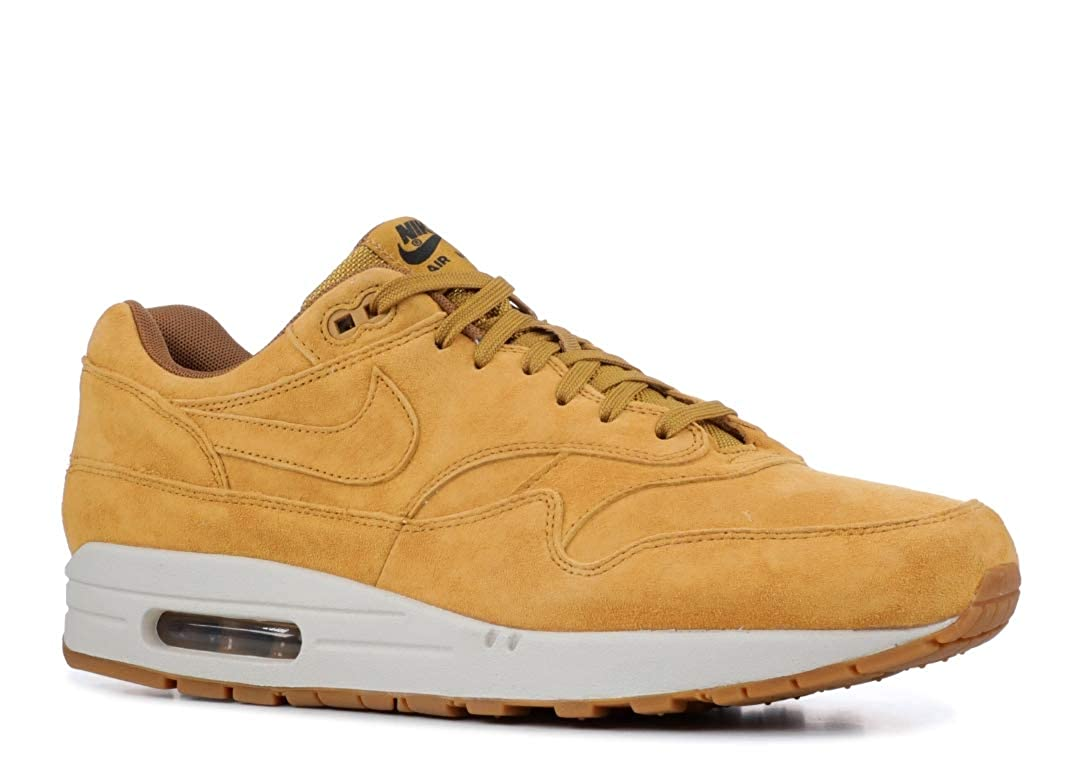 28b0843d73 Amazon.com | NIKE Air Max 1 Premium Mens 875844-701 | Shoes