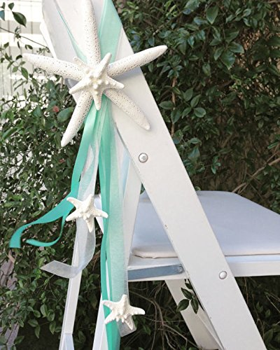 Beach Wedding Starfish Chair Decoration (1) With Natural Starfish And Satin  And Sheer Ribbons