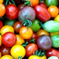 Rainbow Cherry Tomato Mix Seeds Colorful Heirloom Blend Bin94 50 Seeds